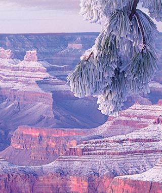 gcsr_HEADER_WINTER2