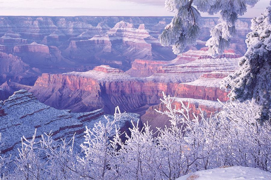 Canyon in Winter