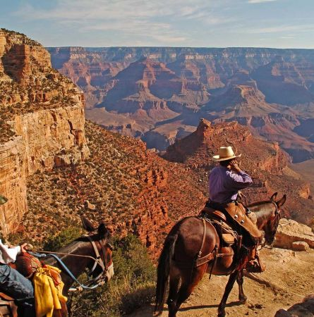 Grand Canyon: Great Jobs You Can Get in 2019